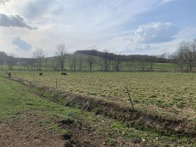 9 Acres Of Productive Coshocton County Land featured photo 10