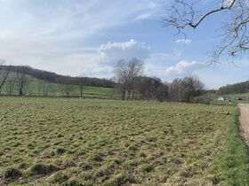9 Acres Of Productive Coshocton County Land featured photo 4