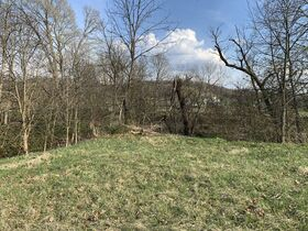 9 Acres Of Productive Coshocton County Land featured photo 12