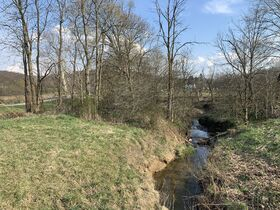 9 Acres Of Productive Coshocton County Land featured photo 5