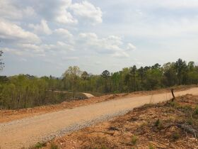 204+/- Acres in Tracts & Combinations - Recreational/Hunting/Estate Lots/Lake Community Property - Near Lay Lake - Chilton County, AL featured photo 10