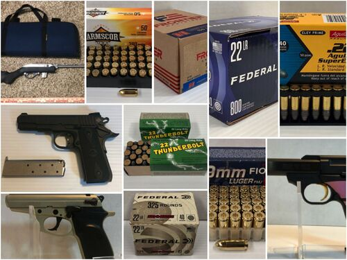 June Sporting Goods Auction - Online Only featured photo