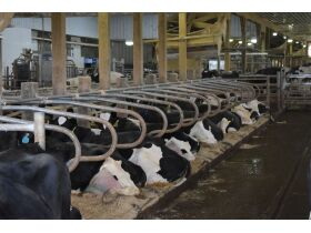DeLAVAL ROBOTIC DAIRY ON 403+/- ACRES FOUR TRACTS  2737 ETOILE RD. GLASGOW, KY featured photo 8