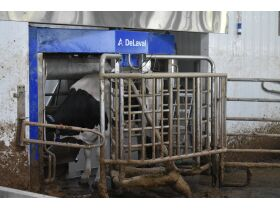 DeLAVAL ROBOTIC DAIRY ON 403+/- ACRES FOUR TRACTS  2737 ETOILE RD. GLASGOW, KY featured photo 6