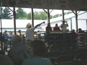 BERLIN FAIR 4H LIVESTOCK AUCTION featured photo 2