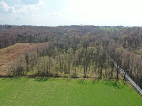 *Absolute Auction* Wooded Vacant Land Close to Winesburg featured photo 9