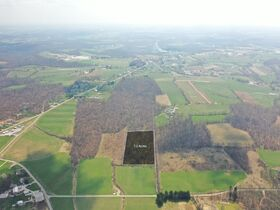 *Absolute Auction* Wooded Vacant Land Close to Winesburg featured photo 2
