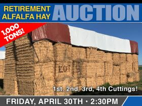 Retirement Hay Auction featured photo 1