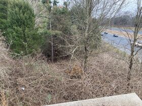 10 Day Upset Period In Effect-NCDOT Asset 206458 - .68+/- AC, Mecklenburg County NC featured photo 9