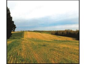 Absolute ONLINE Only Estate Auction - 40.75 Acres -  Philadelphia TN 37846 featured photo 1