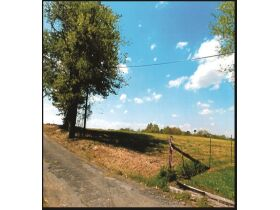 Absolute ONLINE Only Estate Auction - 40.75 Acres -  Philadelphia TN 37846 featured photo 4