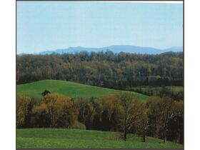 Absolute ONLINE Only Estate Auction - 40.75 Acres -  Philadelphia TN 37846 featured photo 2