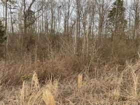 10 Day Upset Period in Effect- NCDOT Asset 206462 - 1.08+/- AC & NCDOT Asset 206474 - 2. 68+/- AC Mecklenburg County NC featured photo 10