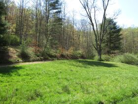 200 Acre Country Retreat W/ Shop & Two Houses Sold in Parcels featured photo 3