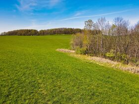 378.4 Acres in 9 Parcels – Tuscarawas County featured photo 4