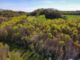 378.4 Acres in 9 Parcels – Tuscarawas County featured photo 5