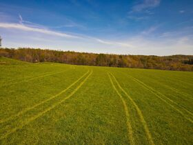 378.4 Acres in 9 Parcels – Tuscarawas County featured photo 6