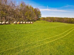 378.4 Acres in 9 Parcels – Tuscarawas County featured photo 7