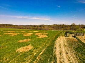 378.4 Acres in 9 Parcels – Tuscarawas County featured photo 8