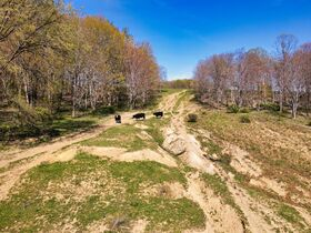 378.4 Acres in 9 Parcels – Tuscarawas County featured photo 11