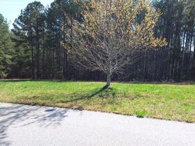 Mountain View Lot Near Lake Lure and Commercial Lot in Hamlet featured photo 3