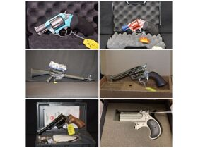 Firearms, Ammo & Coins at Absolute Online Auction featured photo 1