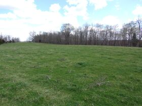 66.242 ACRES - MARKETABLE TIMBER - SOLD IN 9 PARCELS - Online Bidding Only Ends Wed., May 26 @ 3:00 PM CDT featured photo 1