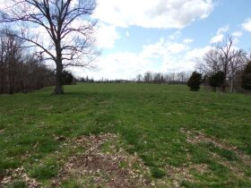 66.242 ACRES - MARKETABLE TIMBER - SOLD IN 9 PARCELS - Online Bidding Only Ends Wed., May 26 @ 3:00 PM CDT featured photo 3