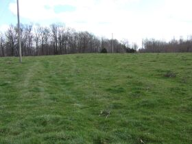66.242 ACRES - MARKETABLE TIMBER - SOLD IN 9 PARCELS - Online Bidding Only Ends Wed., May 26 @ 3:00 PM CDT featured photo 4