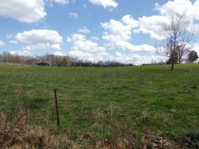 66.242 ACRES - MARKETABLE TIMBER - SOLD IN 9 PARCELS - Online Bidding Only Ends Wed., May 26 @ 3:00 PM CDT featured photo 5