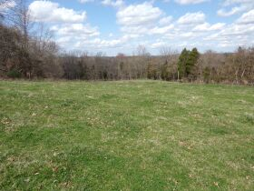 66.242 ACRES - MARKETABLE TIMBER - SOLD IN 9 PARCELS - Online Bidding Only Ends Wed., May 26 @ 3:00 PM CDT featured photo 6