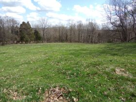 66.242 ACRES - MARKETABLE TIMBER - SOLD IN 9 PARCELS - Online Bidding Only Ends Wed., May 26 @ 3:00 PM CDT featured photo 7