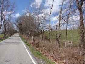 66.242 ACRES - MARKETABLE TIMBER - SOLD IN 9 PARCELS - Online Bidding Only Ends Wed., May 26 @ 3:00 PM CDT featured photo 8