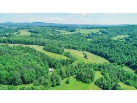 Extraordinary Farm 73 +/-Acres offered Divided with 3 BR Renovated House, Barns & Outbuildings featured photo 4