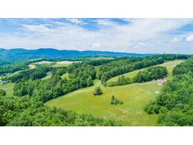 Extraordinary Farm 73 +/-Acres offered Divided with 3 BR Renovated House, Barns & Outbuildings featured photo 6