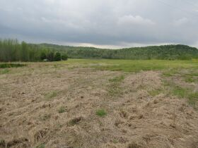 78.989 ACRES SELLING IN 3 PARCELS - Online Bidding Only Ends Monday, May 17th @ 3:00 PM CDT featured photo 8
