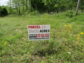 78.989 ACRES SELLING IN 3 PARCELS - Online Bidding Only Ends Monday, May 17th @ 3:00 PM CDT featured photo 4