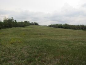 78.989 ACRES SELLING IN 3 PARCELS - Online Bidding Only Ends Monday, May 17th @ 3:00 PM CDT featured photo 11
