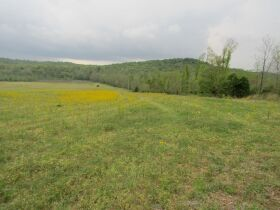 78.989 ACRES SELLING IN 3 PARCELS - Online Bidding Only Ends Monday, May 17th @ 3:00 PM CDT featured photo 12