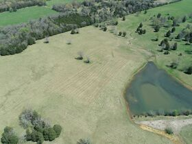 127+/- Acres Offered in Tracts - 4 BR, 4.5 BA Custom Home with Barn, Pond, Open Pasture & Mature Hardwoods - AUCTION July 10th featured photo 10