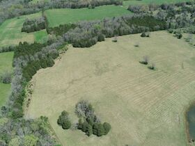 127+/- Acres Offered in Tracts - 4 BR, 4.5 BA Custom Home with Barn, Pond, Open Pasture & Mature Hardwoods - AUCTION July 10th featured photo 12