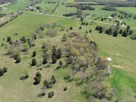 126+/- Acres Offered in Tracts - Beautiful Brick Home - in Chapel Hill, TN - AUCTION COMING SOON! featured photo 11