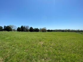 127+/- Acres Offered in Tracts - 4 BR, 4.5 BA Custom Home with Barn, Pond, Open Pasture & Mature Hardwoods - AUCTION July 10th featured photo 9