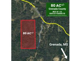 80 Acres Grenada County, MS Selling by Online Auction featured photo 4