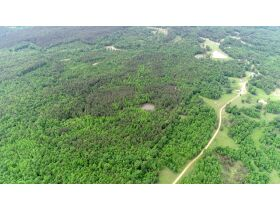 80 Acres Grenada County, MS Selling by Online Auction featured photo 3