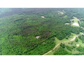 80 Acres Grenada County, MS Selling by Online Auction featured photo 1