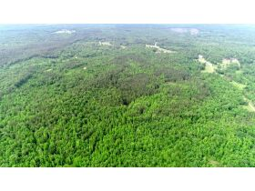 80 Acres Grenada County, MS Selling by Online Auction featured photo 5