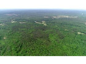 80 Acres Grenada County, MS Selling by Online Auction featured photo 2