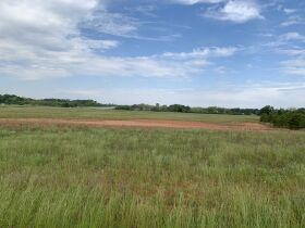 300± Acres | Excellent Crop & Timberland featured photo 4