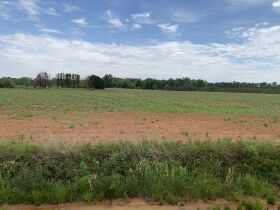 300± Acres | Excellent Crop & Timberland featured photo 11